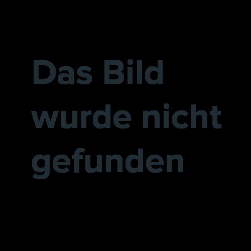 Pflanzentopf-Blumentopf-Blumenkuebel-mit-Untersetzer-versch-Groessen-und-Farben-NEU