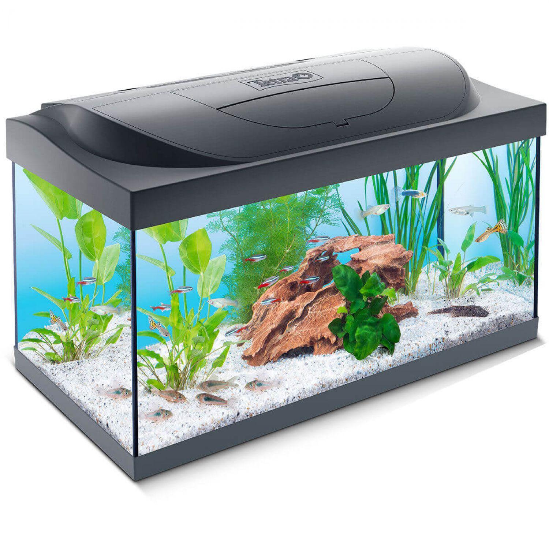 tetra findet dorie led aquarium set 54l ebay. Black Bedroom Furniture Sets. Home Design Ideas